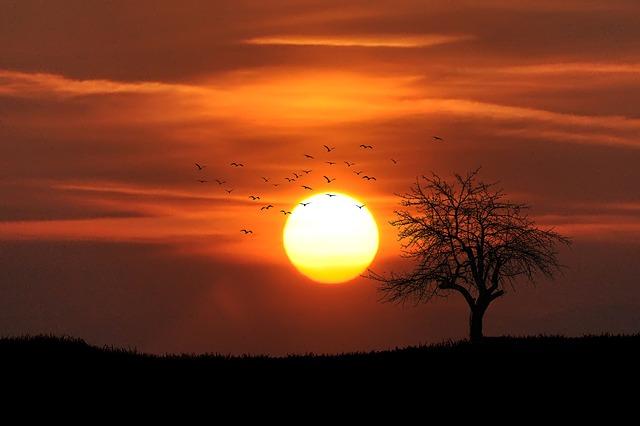 Imagem do Por do Sol